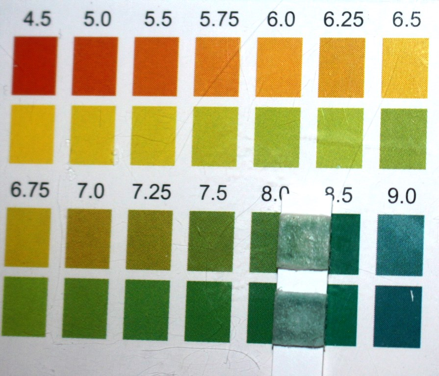Heimish All Clean White Clay Foam pH Test