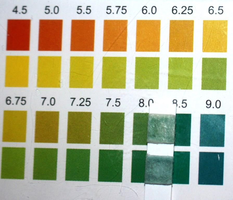 Heimish All Clean White Clay Foam pH Test